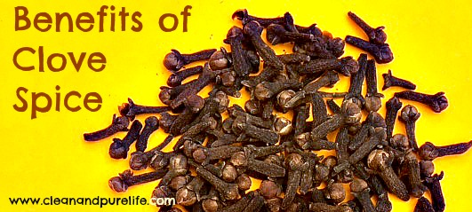 VARIOUS CLOVE SPICE BENEFITS